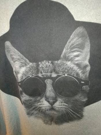 Foto Carousel Producto: Camisa larga de gatito GoTrendier